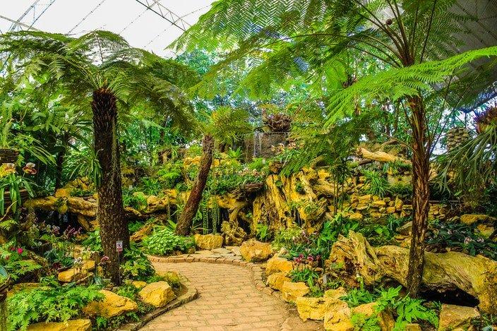 Visiting a botanical garden